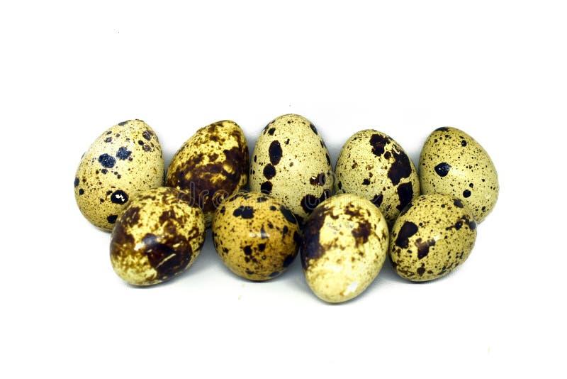 le fond eggs le blanc s?lecteur de cailles d'isolement par orientation photos libres de droits