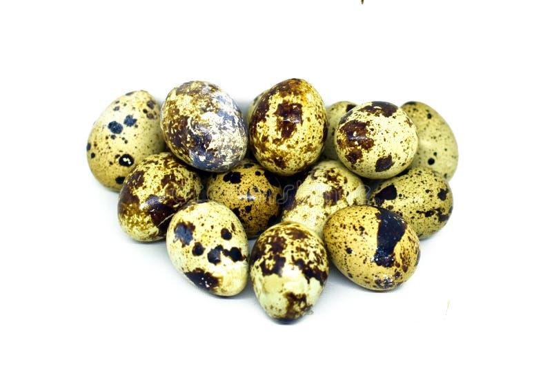 le fond eggs le blanc s?lecteur de cailles d'isolement par orientation image stock