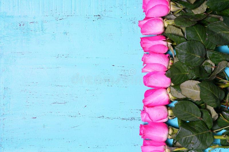 Le fond en bois bleu d'aqua de vintage avec la rose de rose bourgeonne photos libres de droits