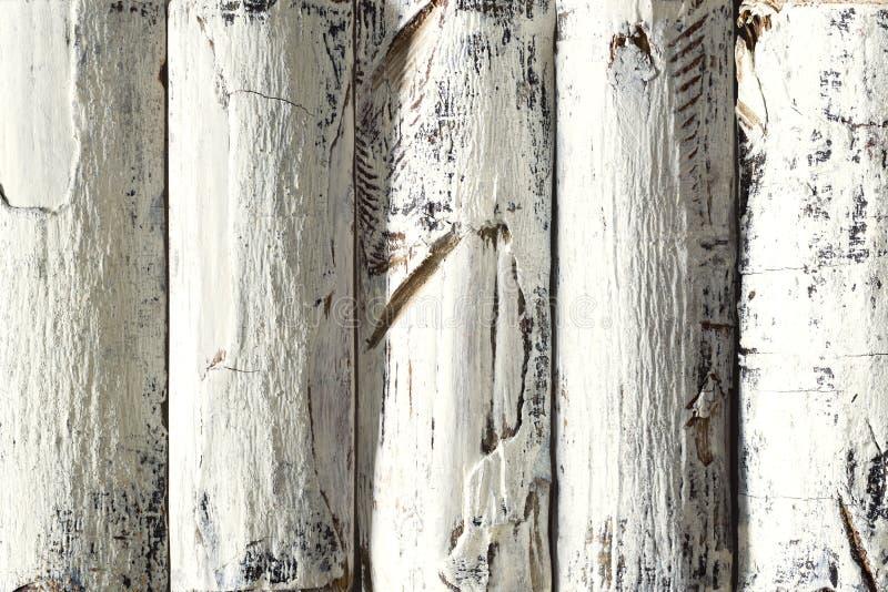 Le fond en bois de rondin, blanc a coloré les planches en bois, écorce texturisée photos libres de droits