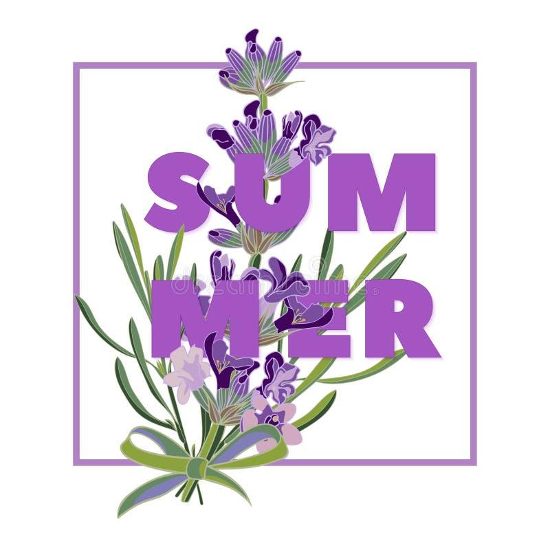 Le fond floral d'été avec la belle lavande fleurit sur le fond blanc Carte de voeux multicolore de typographie illustration de vecteur