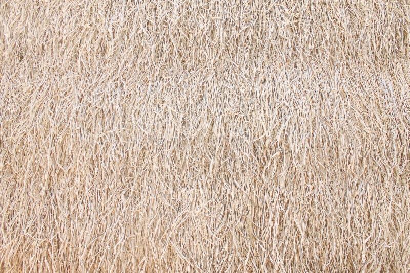 Le fond ou le foin d'herbe sèche emballent des modèles de texture sur le mur photos stock