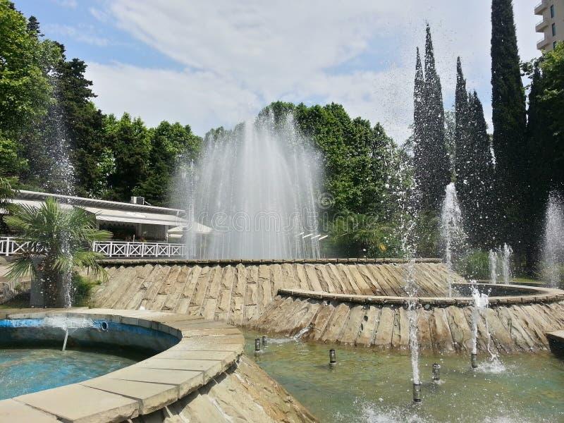 Le fontane nella città parcheggiano, Soci, Russia fotografia stock libera da diritti