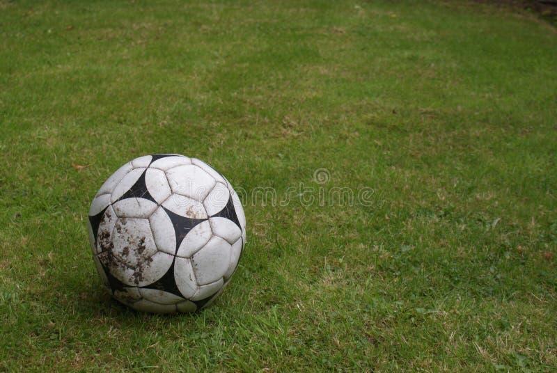 Le football sur l'herbe photographie stock libre de droits