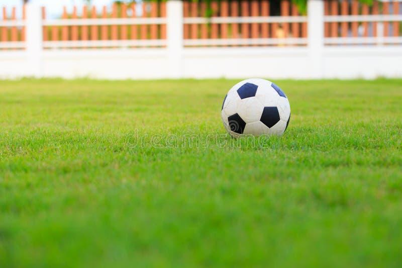 Le football sur le champ de l'herbe verte photos stock