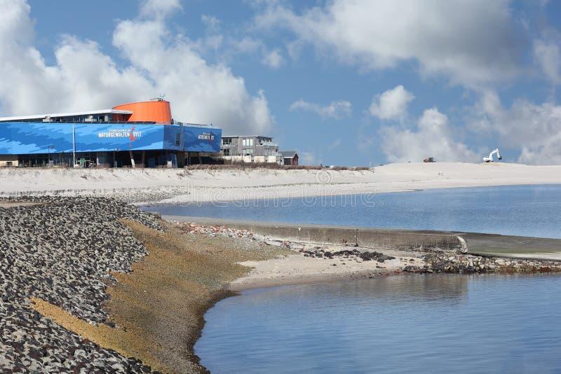 Le forze della mostra della natura nella lista sull'isola di Sylt fotografia stock libera da diritti