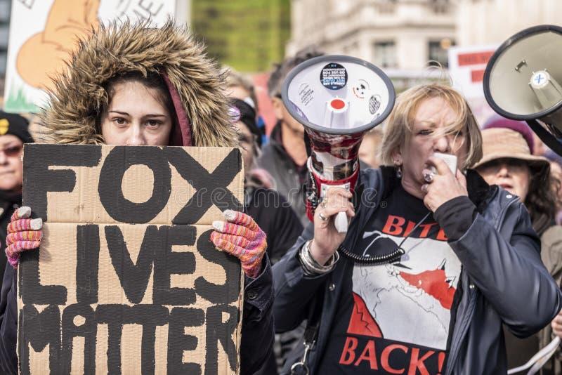 Le Fox vit la matière, protestation de chasse photos libres de droits