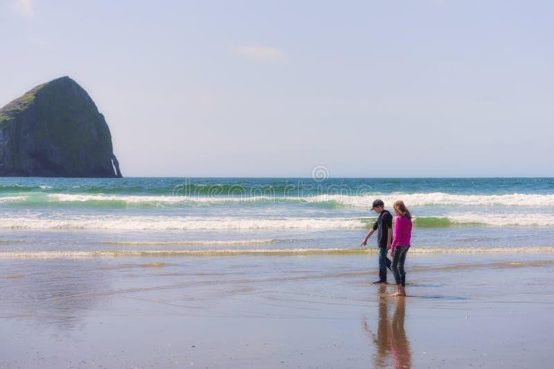 Le frère et la soeur recherchent la vie marine sur la plage images stock