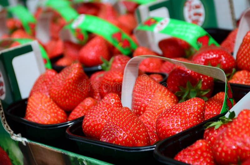Le fragole rosse fresche hanno sistemato le merci nel carrello pronte per la vendita al mercato fotografie stock libere da diritti