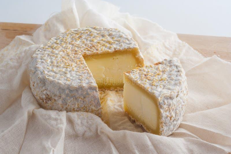 Le fromage de chèvre photographie stock