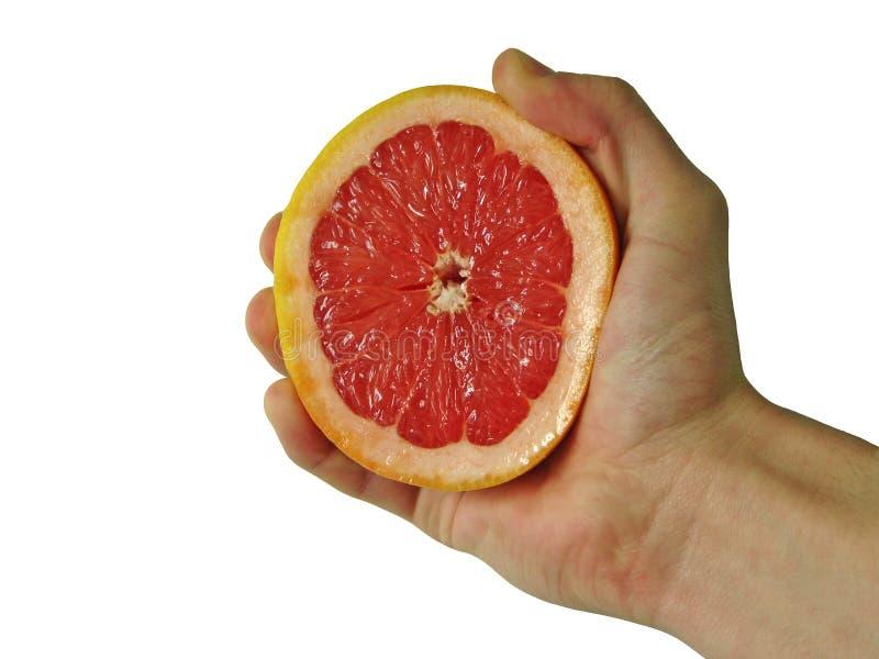 Le fruit photographie stock libre de droits