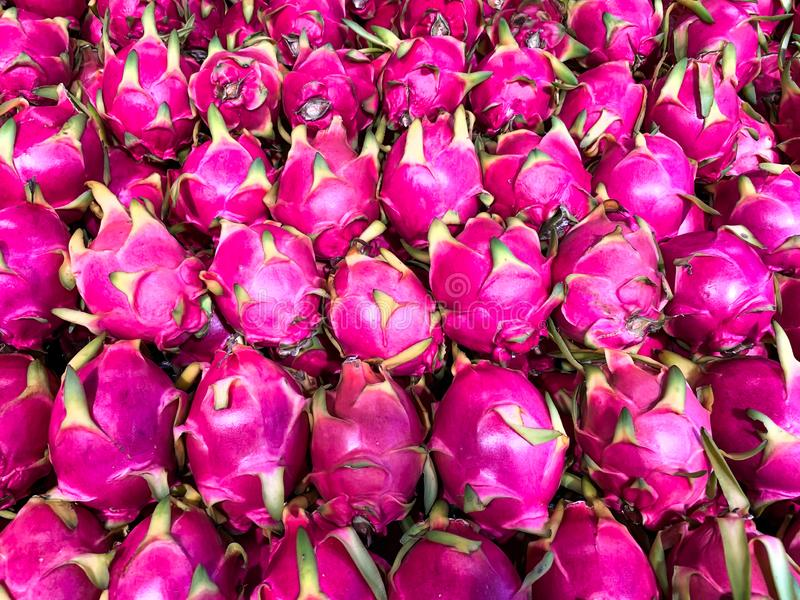 Le fruit du dragon, fruit rose, undatus de Hylocercus, se vendent sur le marché photo libre de droits