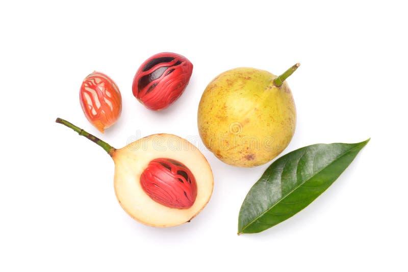 Le fruit frais de noix de muscade avec des graines a coupé dans la moitié image libre de droits