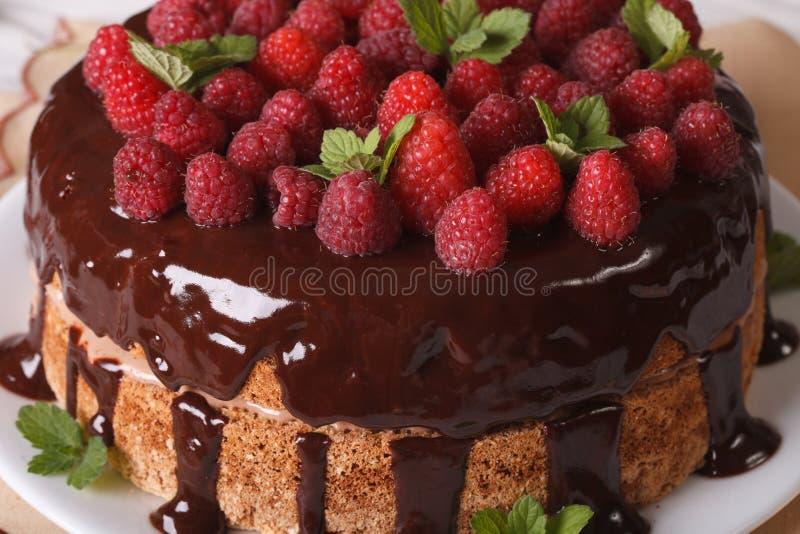 Le gâteau de framboise de chocolat avec les baies fraîches se ferment vers le haut d'horizontal photo libre de droits