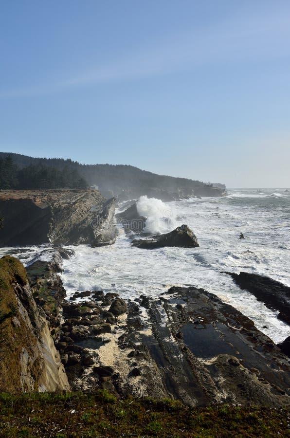 Le géant ondule au parc d'état d'acres de rivage, Orégon image stock