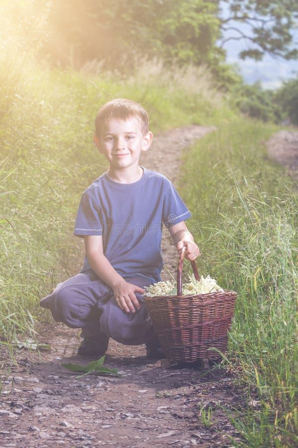 Le garçon avec de pleines herbes fleurissent le panier sur le chemin image libre de droits