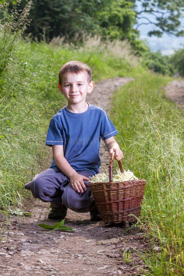 Le garçon avec de pleines herbes fleurissent le panier sur le chemin images stock