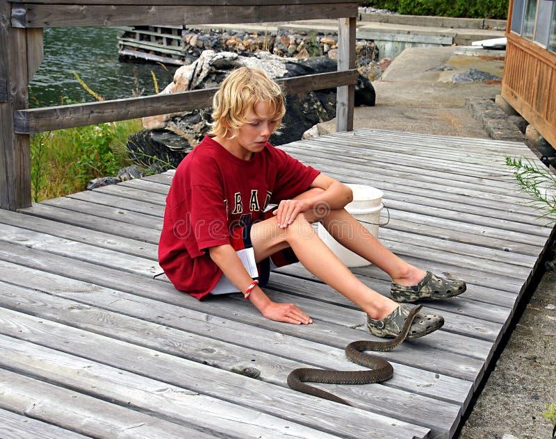 Le garçon contacte le serpent photographie stock libre de droits
