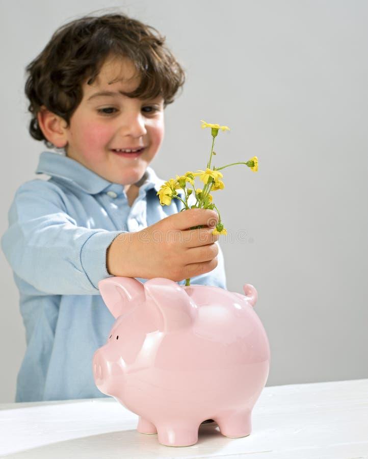 le garçon de côté fleurit porcin photographie stock