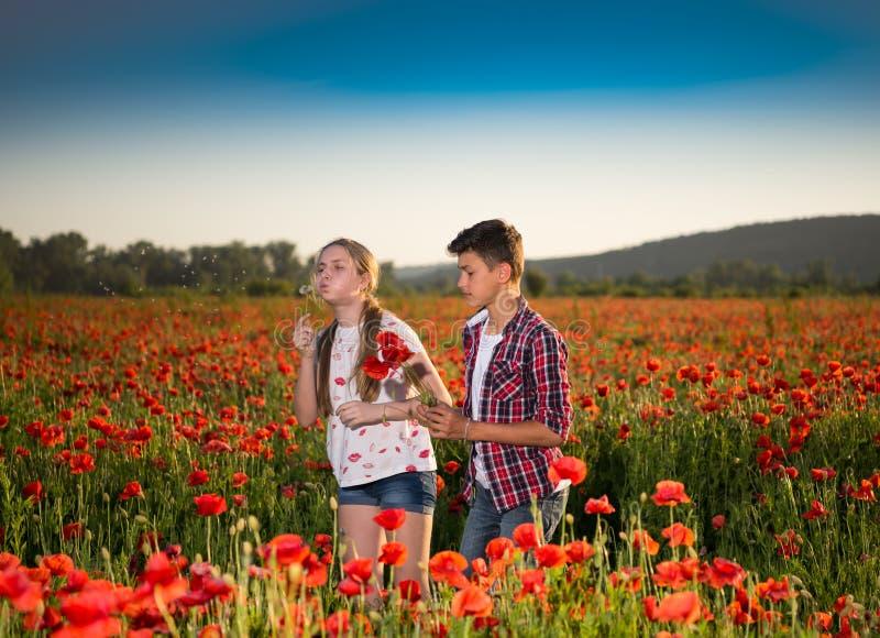 Le garçon de l'adolescence et la fille posant sur le pavot mettent en place image stock