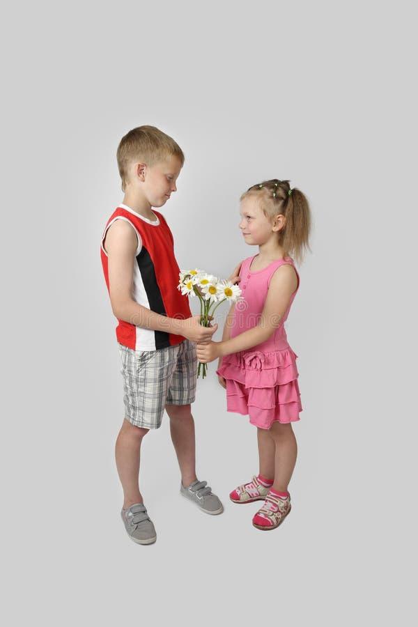 Le garçon donne le bouquet de fille des marguerites sur le gris image libre de droits