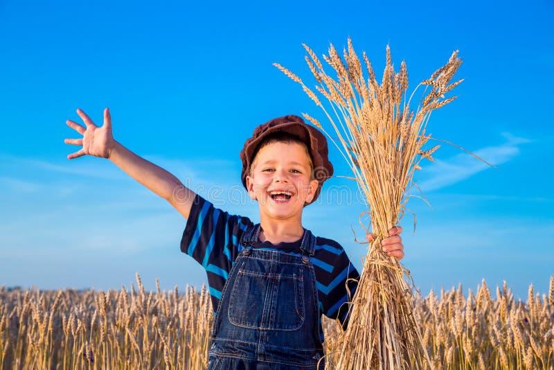 Le garçon du producteur heureux sur le champ de blé images stock