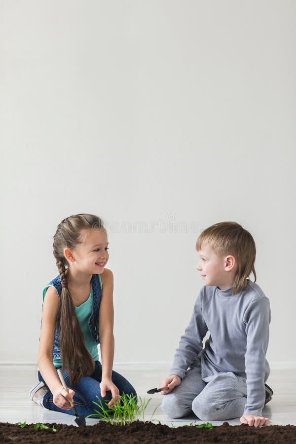 Le garçon et la fille sont jetés l'usine dans le sol au jour de terre image libre de droits