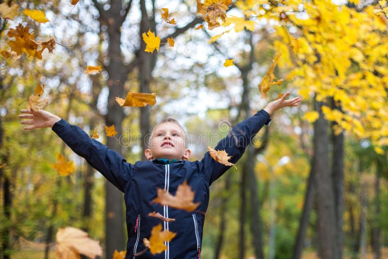 Le garçon jette des feuilles d'automne Enfant joyeux Parc, jour d'automne images stock