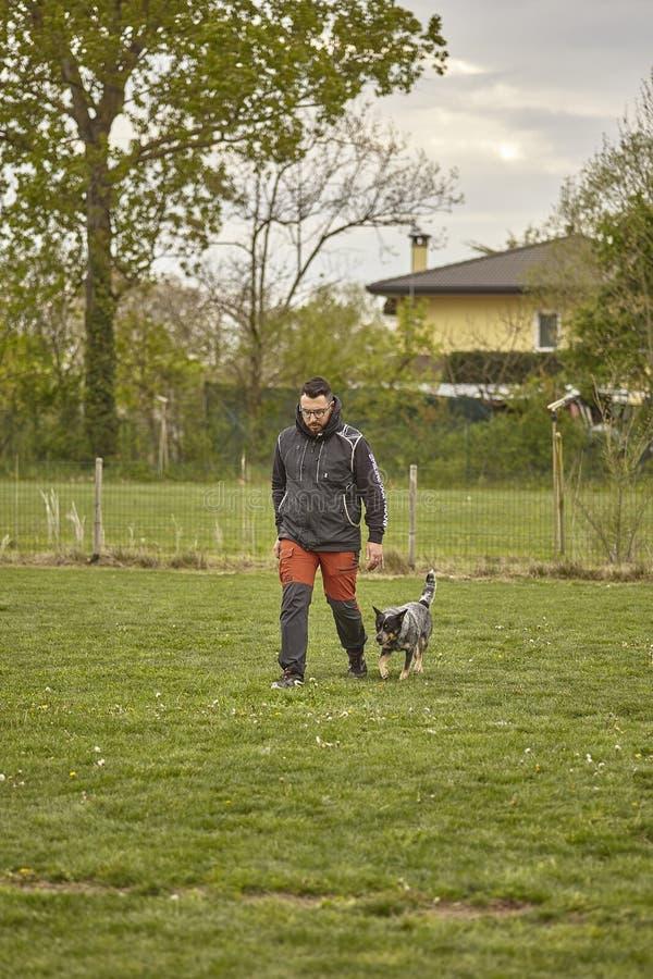 Le gar?on marche au parc avec le chien #2 image stock