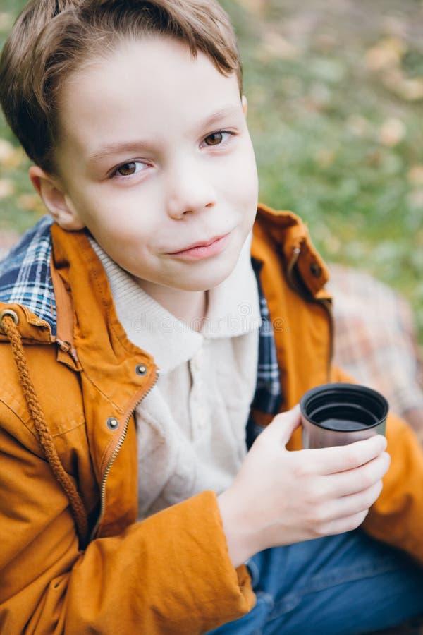 Le garçon mignon marche et pose en parc coloré d'automne photo libre de droits