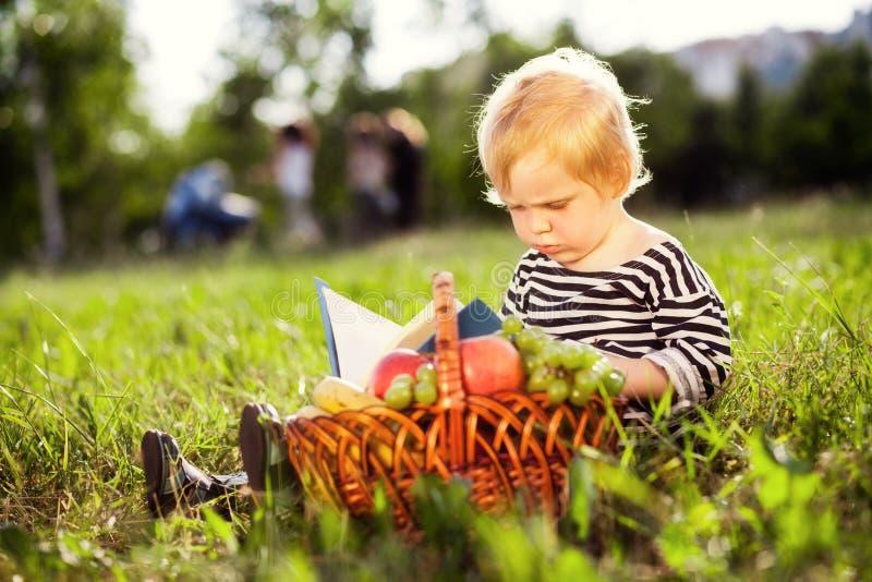 Le garçon regarde un livre photographie stock libre de droits