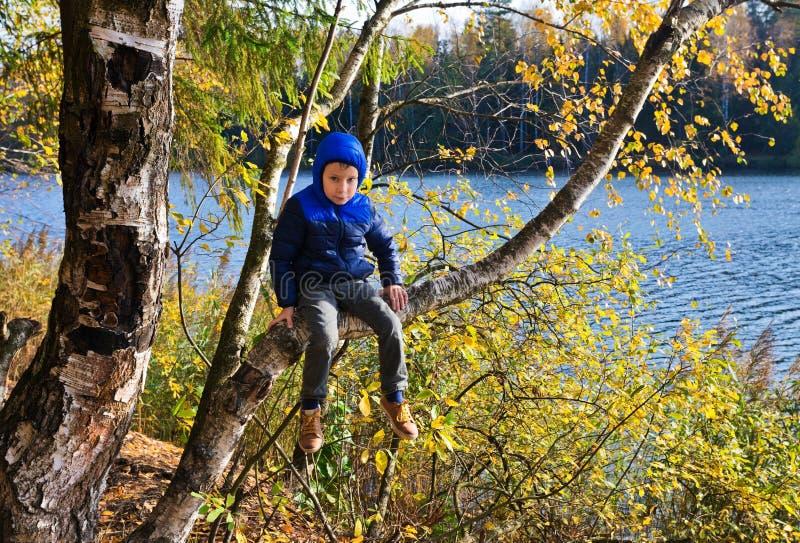 Le garçon s'assied sur un arbre de bouleau dans une forêt d'automne photographie stock