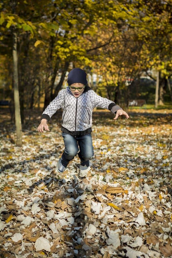 Le garçon sautant dans des feuilles sèches image stock