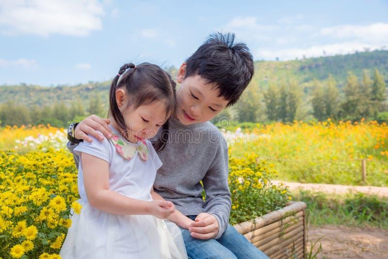 Le garçon soulage sa soeur pleurante en parc photographie stock