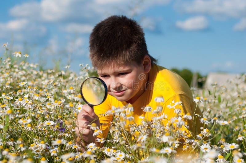 Le garçon voit la loupe de fleurs photos stock