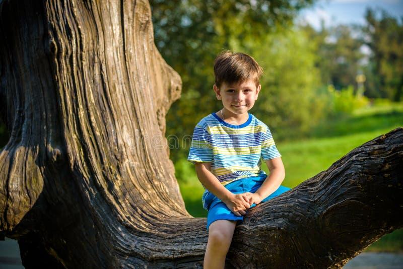 Le gar?on s'assied sur un rondin L'enfant marche dans la for?t d'?t? o? l'enfant se repose sur un arbre tomb? photos libres de droits