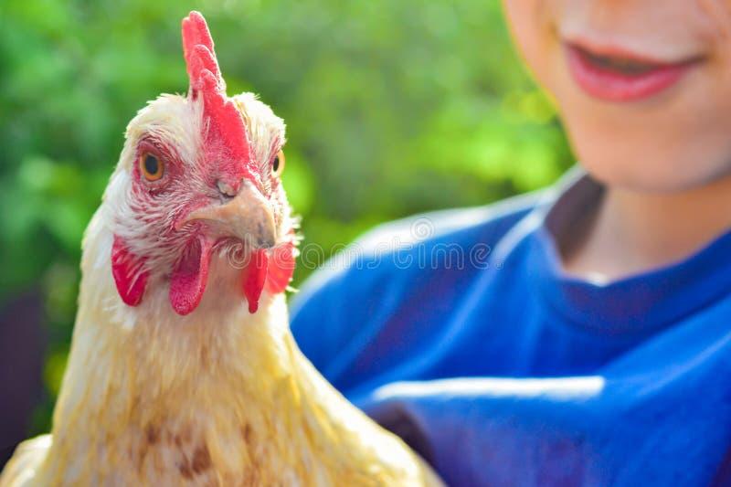 Le gar?on tient un poulet et un sourire blancs photographie stock libre de droits