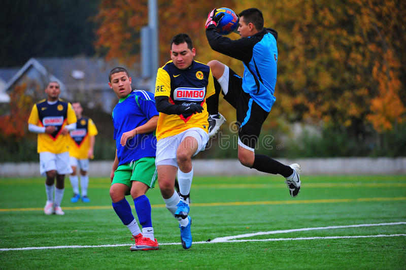 Le gardien de but du football de club de Mens sauvegardent photographie stock libre de droits