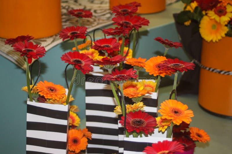Le gerbera orange, rouge et jaune fleurit dans un sac photo libre de droits