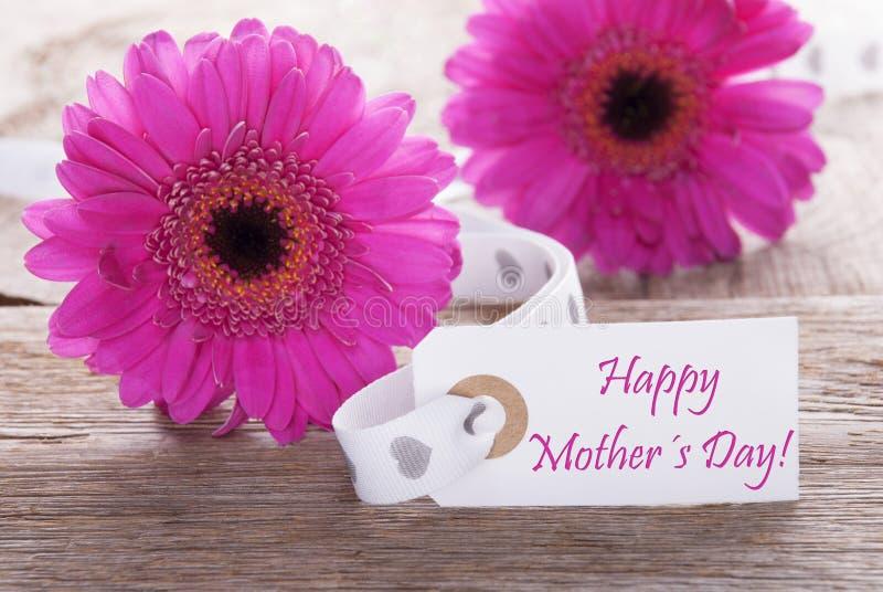 Le Gerbera rose de ressort, label, textotent le jour de mères heureux images stock