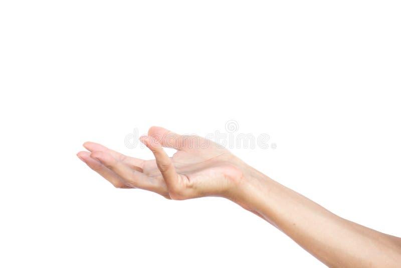 Le geste de main s'ouvrent semblent comme une exploitation quelque chose vide d'isolement sur le fond blanc Chemin de coupure images libres de droits