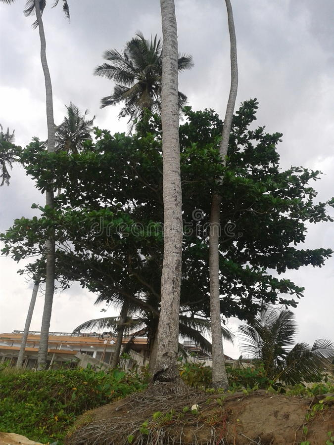 Le Ghana mystérieux image stock