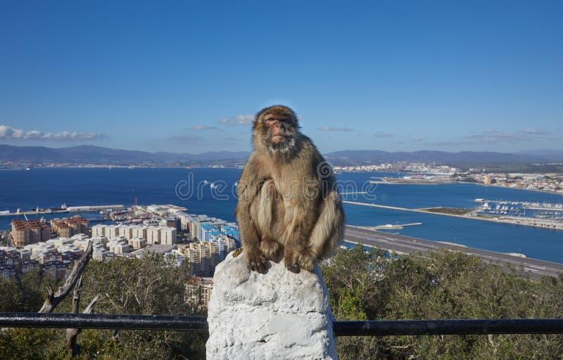 Le Gibraltar, points d'intérêt pour le secteur d'outre-mer britannique sur la broche du sud de la péninsule ibérienne, images libres de droits