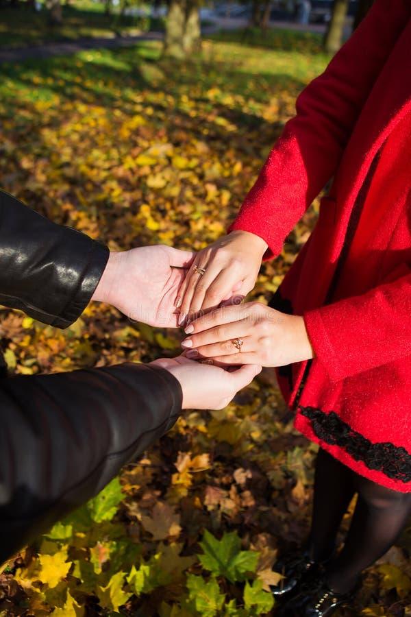 Le giovani coppie nell'amore che cammina in autunno parcheggiano tenersi per mano lo sguardo nel tramonto immagini stock