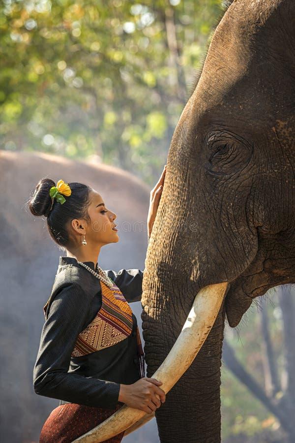 Le giovani donne di Kui che portano i vestiti indigeni stanno vivendo con gli elefanti Donna asiatica che abbraccia un grande ele immagine stock