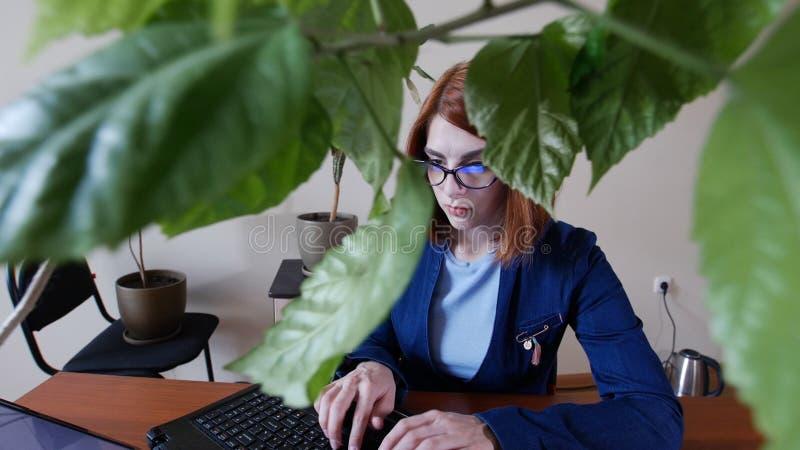 Le giovani donne rosse del officeworker dei capelli in vetri sta stampando sulla tastiera del computer portatile Guardi dalle fog fotografie stock libere da diritti