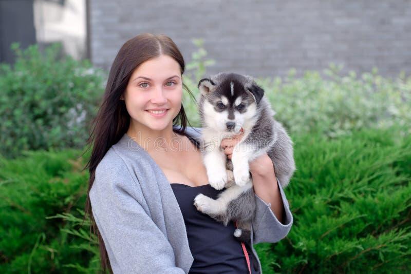 Le giovani donne tiene il suo piccolo cucciolo dell'animale domestico del migliore amico del husky in lei armi Amore per i cani fotografie stock