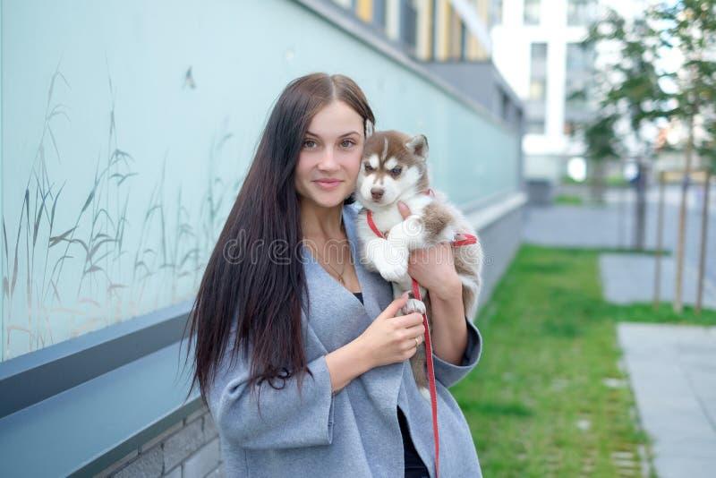 Le giovani donne tiene il suo piccolo cucciolo dell'animale domestico del migliore amico del husky in lei armi Amore per i cani fotografia stock libera da diritti