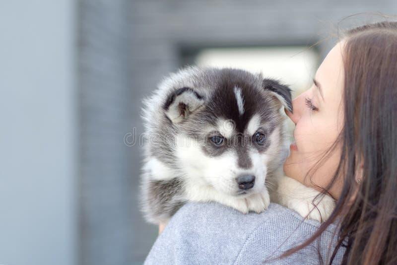 Le giovani donne tiene il suo piccolo cucciolo dell'animale domestico del migliore amico del husky in lei armi Amore per i cani fotografie stock libere da diritti