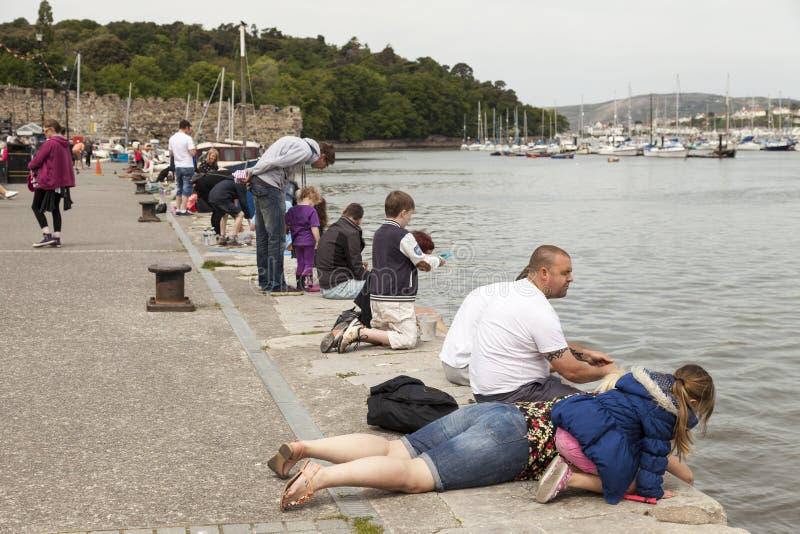 Le giovani famiglie compensano la deriva la pesca dal lato della banchina in Conwy fotografia stock libera da diritti